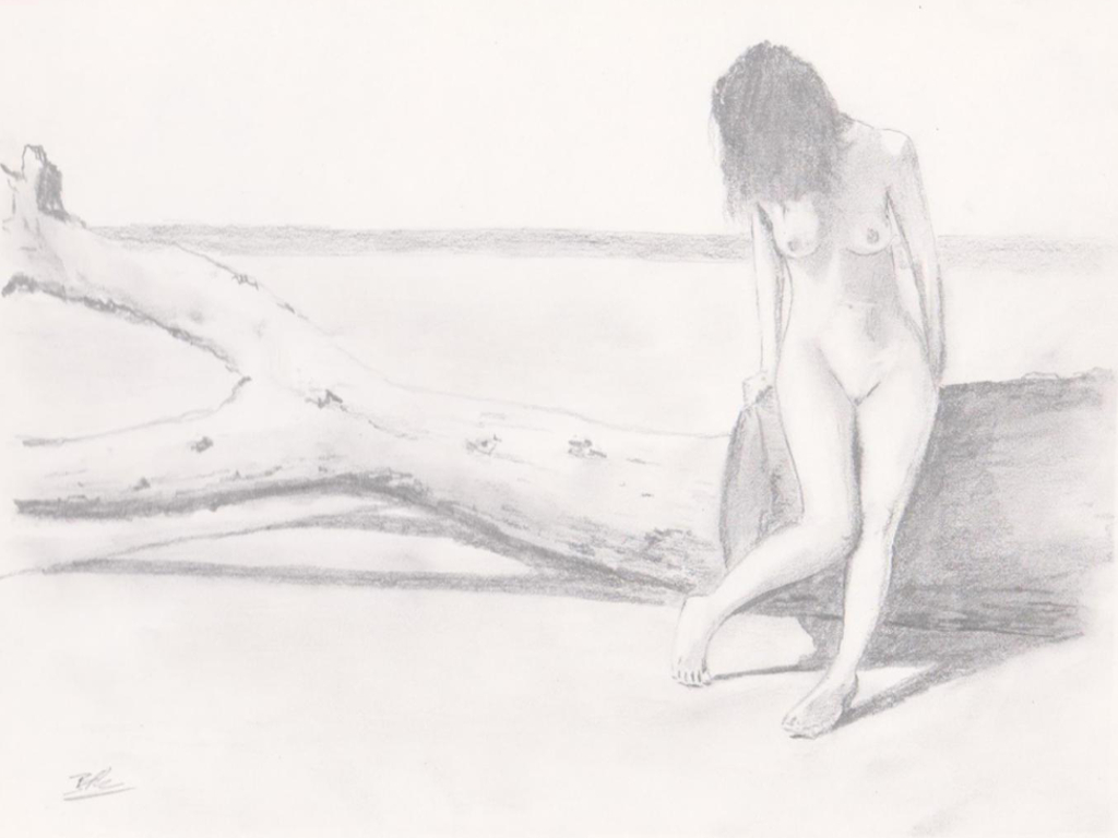 Driftwood on the beach - Pencil sketch